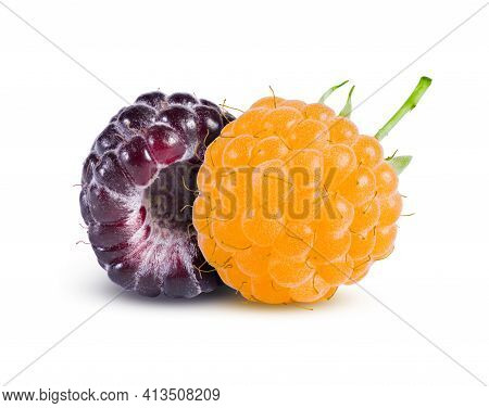 Black And Yellow Raspberries Isolated On White. Perfectly Retouched, High Resolution And Full Depth