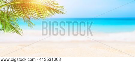 Panorama Of Blurred Blue Sky And Leaves Of Coconut Palm Tree. Landscape Of Tropical Summer. Summer B