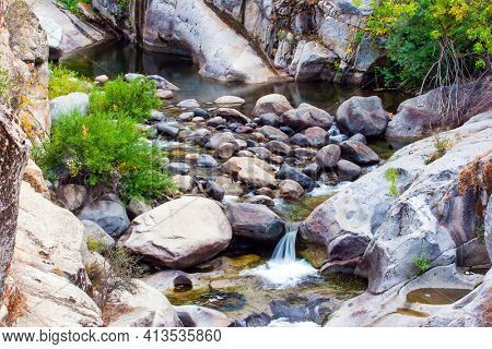 Picturesque rocky stream. Redwood. Sequoia Park in California, USA. The natural range of the genus is the Pacific coast of North America. Travel to America.