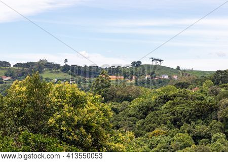 Forest And Vineyards, Pinto Bandeira, Rio Grande Do Sul, Brazil