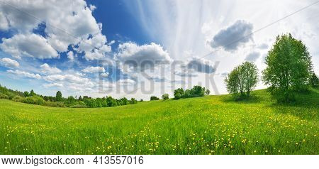 Green Field With White And Yellow Dandelions Outdoors In Nature In Summer. Meadow With Beautiful Flo