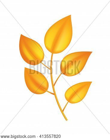 Autumn Leave. Symbol With Watercolor Texture, Vector Illustration. Isolated Design Element Tree Leaf
