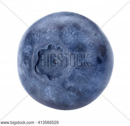 Blueberry Isolated On White Background. Blue Forest Berry Macro Studio Shot. Beautiful Bluberry Clos