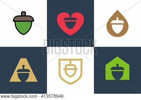 Oak Tree Acorn Logo Set, Oak Nut Icon Design, Oak Seed Symbol - Vector