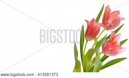 Bouquet Of Realistic Tulips On A White Background. Composition Of Pink Tulips Buds. Template For Inv