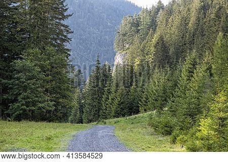 Forest Road In Low Tatras Mountains, Slovak Republic. Hiking Theme. Seasonal Natural Scene.