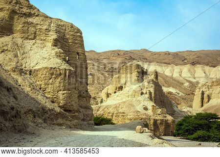 Dirt road through the canyon. Green desert acacia. Misty winter day over the Dead Sea. Judean desert. Ancient ruined mountains of solid limestone.