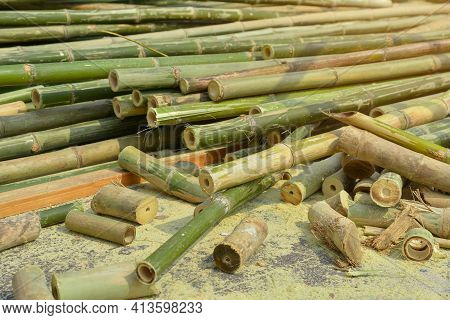 Bamboo Trunk Is Commonly Used To Make Bales Of Rice, Home Appliances And Wickerwork In Many Countrie