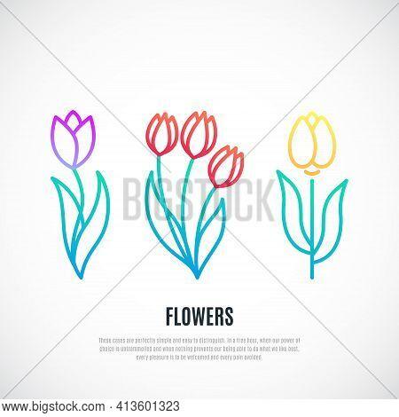 Set Of Tulips Isolated On White Background. Decorative Tulips Design. Vector Illustration.