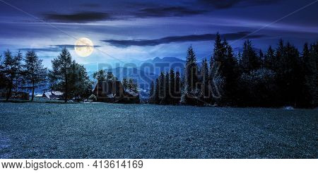 Rural Landscape In Tatra Mountains At Night. Spruce Trees On The  Grassy Meadow. Beautiful Nature Sc