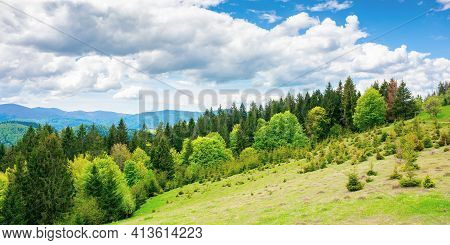 Forest On The Grassy Meadow In Mountains. Beautiful Countryside Landscape On A Sunny Day. Clouds On