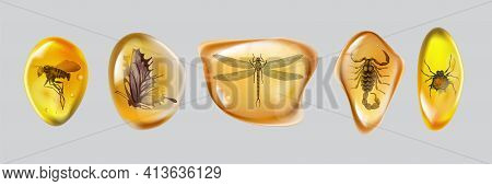 Set Amber Stone With Insects Isolated On White Background. Collection Of Ancient And Modern Insects