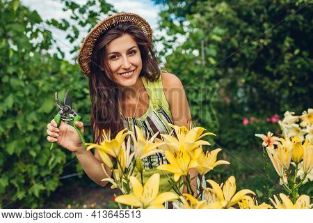 Portrait Of Woman Picking Flowers In Garden Using Pruner. Happy Gardener Enjoying Yellow Lilies. Gar