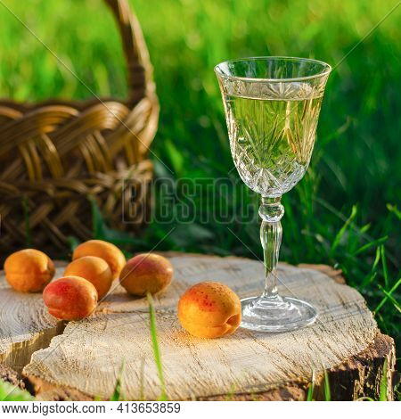 A Glass Of White Wine And Apricots Stand On The Stump Near The Picnic Basket. Picnic In The Garden
