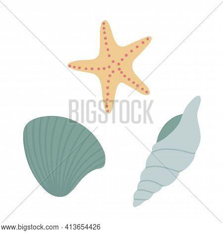 Set. Seashells, Starfish, Shellfish Living In The Sea. Vector Illustration. Isolated Object, Element