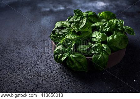 Fresh Green Basil In Ceramic Bowl On A Dark Background. Close Up, Copy Space
