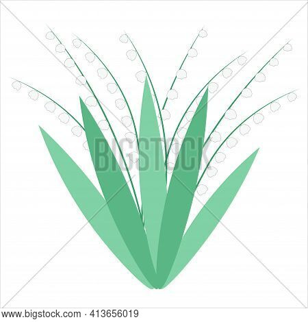 Lilies Of The Valley. White Wild Forest Flowers. Cute Little Bells. Valley Of Flowers. Vector, Bouqu