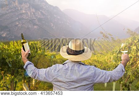 Man With A Glass, Bottle Of White Wine In The Vineyards Of Italy. Person Pouring Wine. Free Space Fo