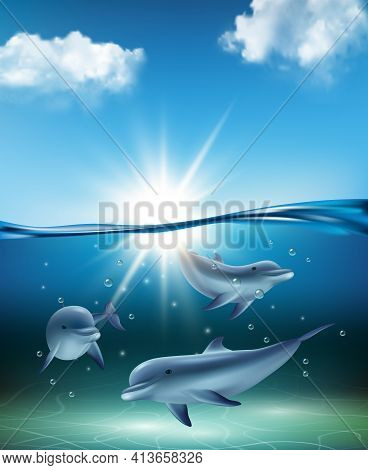Underwater Dolphin. Ocean Kind Swimming Big Fishes Dolphins Playing Sea Life Decent Vector Realistic