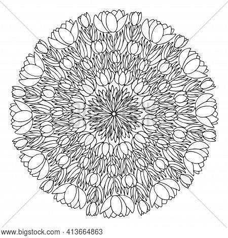 Blossom Crocus Flowers Mandala Line Art Stock Vector Illustration. Funny Spring Floral Mandala Black