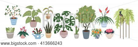Home Plants, Houseplants Vector Illustration Set. Cartoon Indoor Green Botanical House Decor Collect