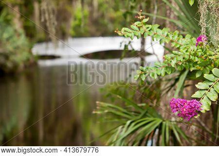 Magnolia Plantation is a top vacation destination for travel in Charleston, South Carolina.