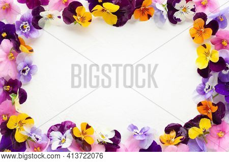 Spring or summer flower composition with edible pansy and violets on white background. Flower frame, copy space. Healthy life concept.