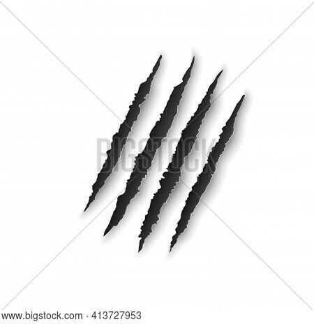 Bear Claw Marks, Scratches, Wild Animal Talon Rips, Predator Nails Vector Trail. Tiger Or Cat Paws S