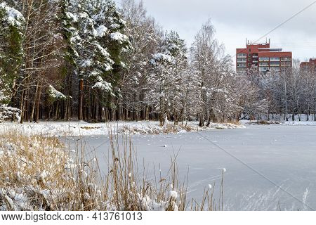 On The Shore Of Lake A Lot Of Dry Reeds. On The Far Shore There Is A Forest Covered With Snow And Re