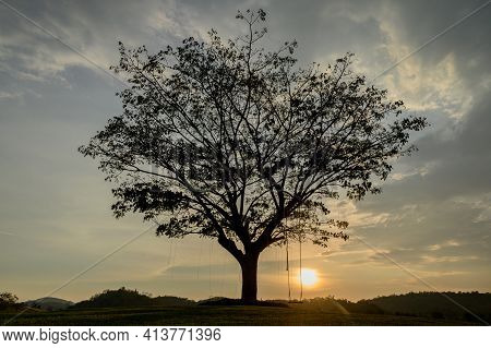 Silhouette Of A Wooden Swing Under The Tree. Lonely And Relaxing Golden Ligth On Sunset On Summer Ho