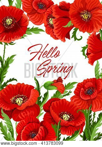 Spring Season Poster With Red Poppy Flowers, Leaves And Buds. Floral Background Or Holiday Frame Wit