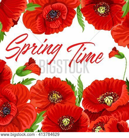Spring Time Poster With Flowering Plants. Red Or Common Poppy Flowers, Leaves And Buds Hand Drawn Ve