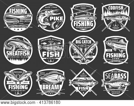 Fishing Vector Icons With Sea Eel, Pike And Hake, Horse Mackerel, Gilt Head Bream, Anchovy And Tuna