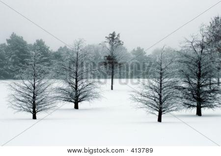 Saison Winterlandschaft