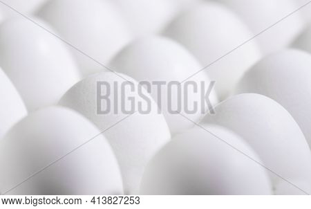 A Lot Of White Fresh Eggs In A Cardboard Box, Natural Eko Product, Trendy Abstact Background