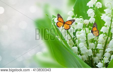 Lilly Of The Valley Flowers On Gray Bokeh, Spring Scene With Butterflies And Copy Space