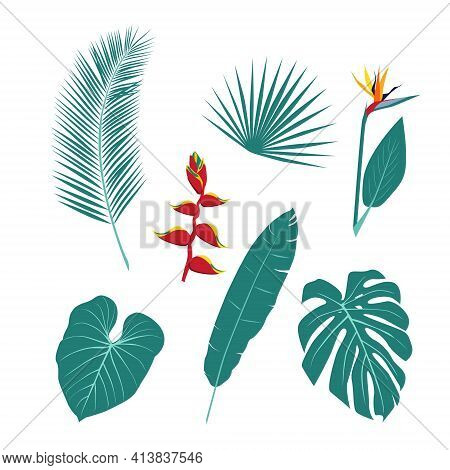 A Set Of Unusual Tropical Plants, Leaves And Flowers. The Plant World. Vector Illustration On A Whit