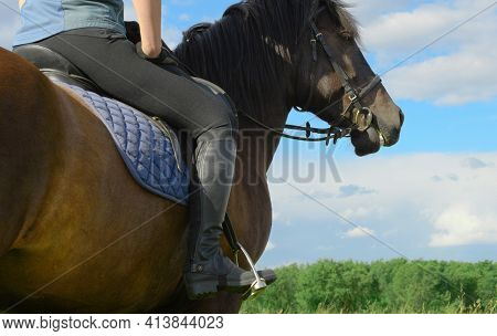 Female Rider Is Sitting In Her Saddle With Loose Reins In Outdoors, Behind View. Woman And Her Bay H