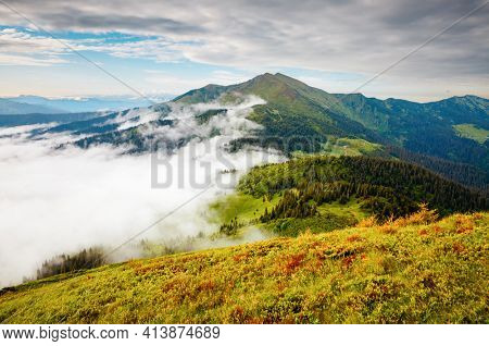Splendid mountain valley is covered with fog on a sunny day with green alpine meadows. Location place Carpathian mountains, Ukraine, Europe. Vibrant photo wallpaper. Discover the beauty of earth.