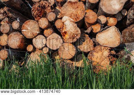Wooden logs and green grass
