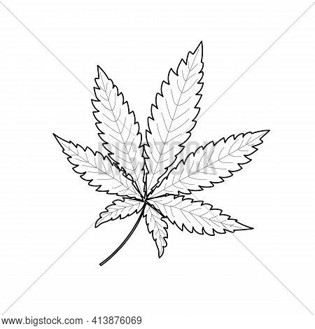 The Marijuana Leaf Is Drawn With A Black Outline On A White Background. Pattern Of A Narcotic Plant