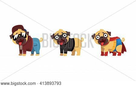 Funny Pug Dog In Colorful Costumes Vector Set