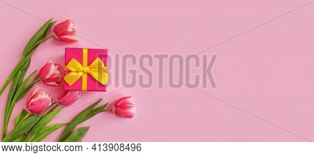 Gift Box, Tulip Flower On Colored Background