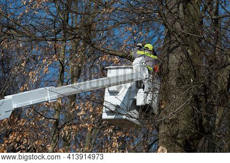 Trimming Trees With A Chainsaw Helmentwood Danger