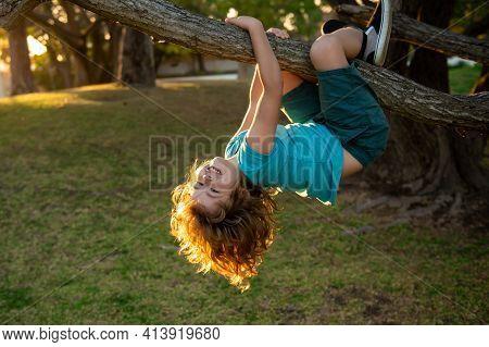 Funny Climbing Boy. Kid Climb High Tree In Summer Park