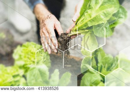 Smart farming 5.0 green plant product agricultural technology background