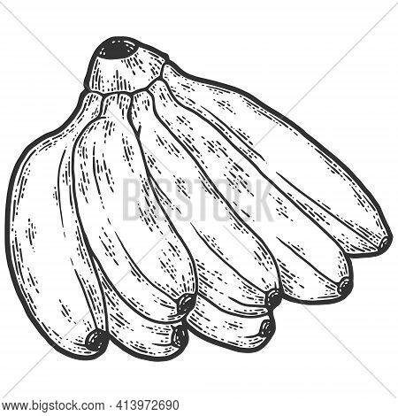 Mini Bananas. Sketch Scratch Board Imitation. Black And White.