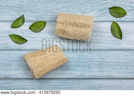 Fibrous Vegetable Cleaning Sponge - Luffa Operculata