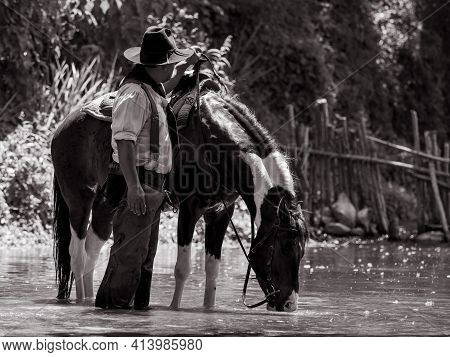 Senior Cowboys Resting With Horses And Stood To Bathe In The River