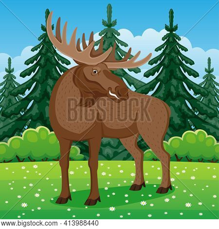 Nature Illustration With Moose On Grass In Coniferous Forest.
